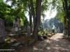 cementerio-aleman-sighisoara