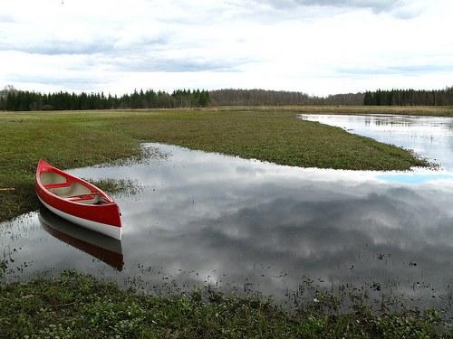 Parque Nacional Soomaa