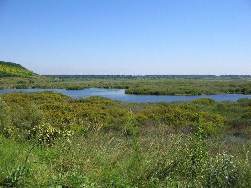 La Reserva Natural de Srébarna